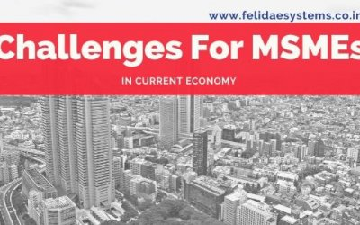 Image Challenges for MSMEs | Felidae Systems